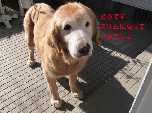 th_IMG_5090-1.jpg