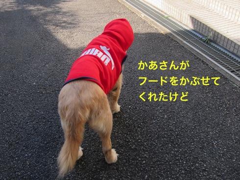 th_IMG_5205-.jpg