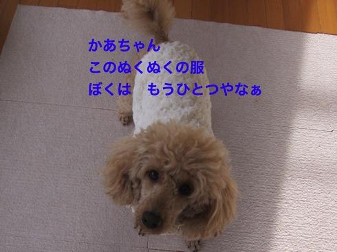 th_IMG_5219-1.jpg
