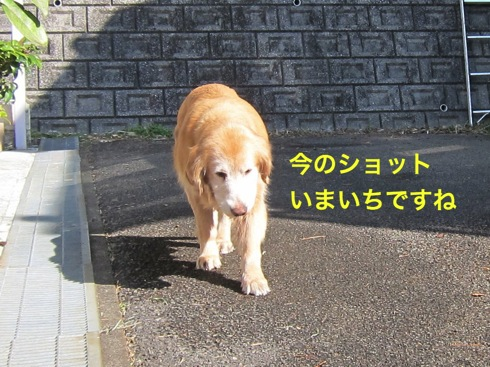 th_IMG_5660-1.jpg