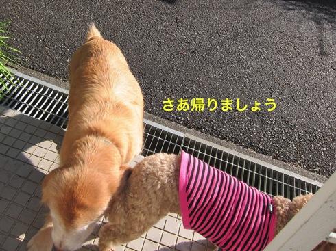 th_IMG_5674-1.jpg