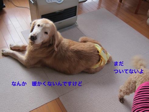 th_IMG_5710-1.jpg