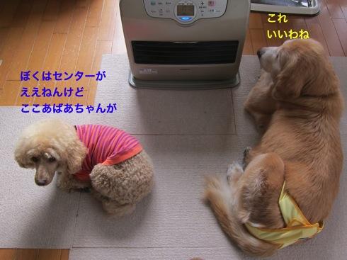 th_IMG_5724-1.jpg