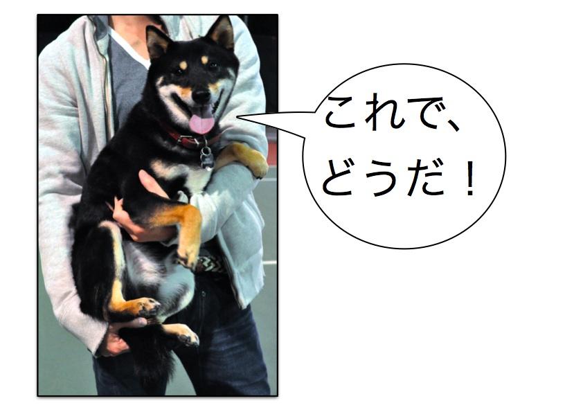 Page_3.jpg