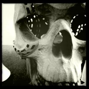 skull696.jpg