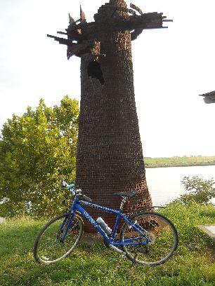 サイクリング9-25 (4)