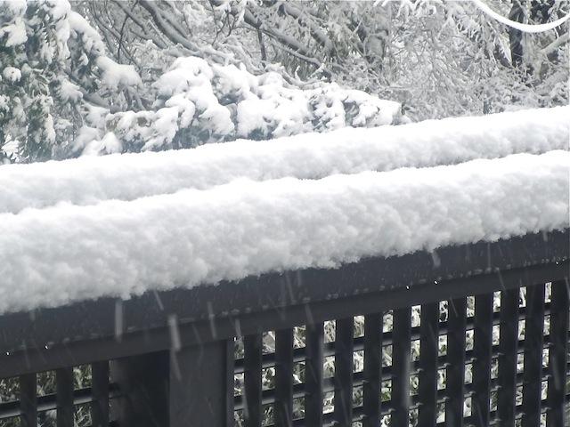 手すりの雪