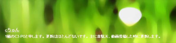 2011y11m15d_004107875.jpg