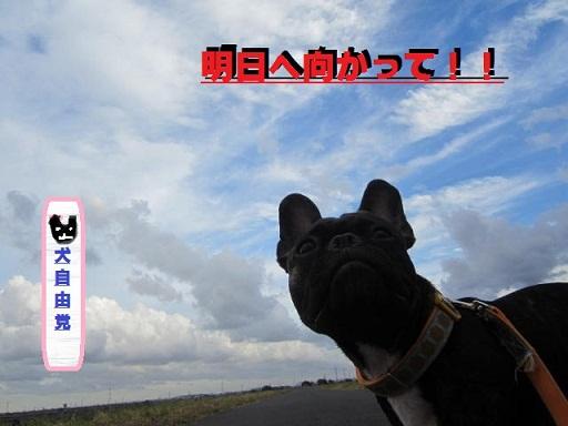 4_20120918234503.jpg