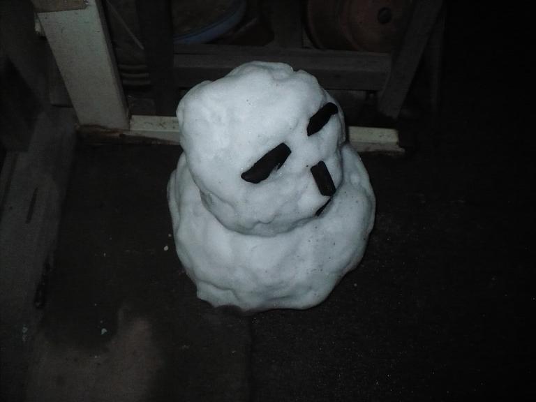 雪だるま夜