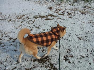 雪を踏みしめて…
