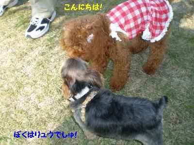 20111022150841.jpg