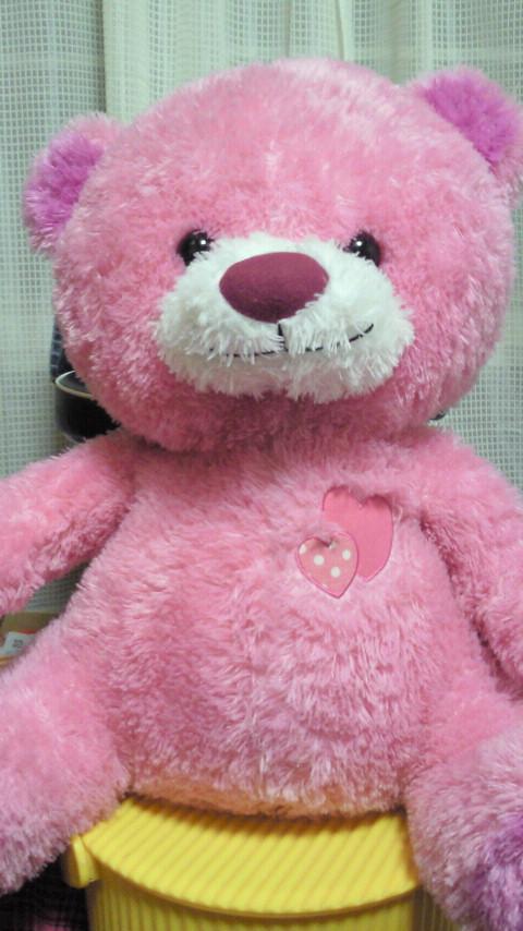 ピンクのクマさん