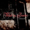 veiledinscarlet_idealism.jpg