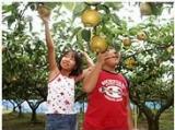 小西果樹農園