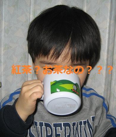 20120121_AMOMA_b02.jpg