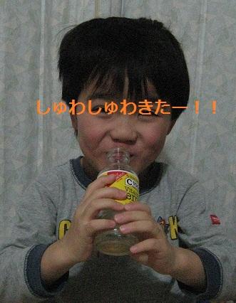 20120128_vita_c_07.jpg