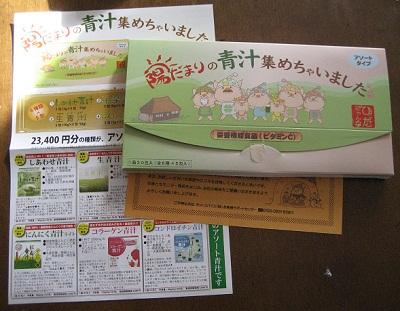 hidamariaojiru_20120217_01.jpg
