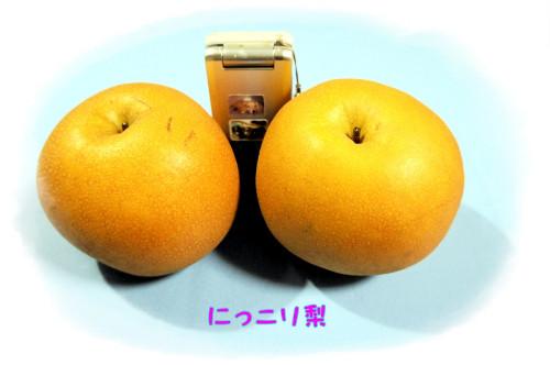 にっこりDSC00392