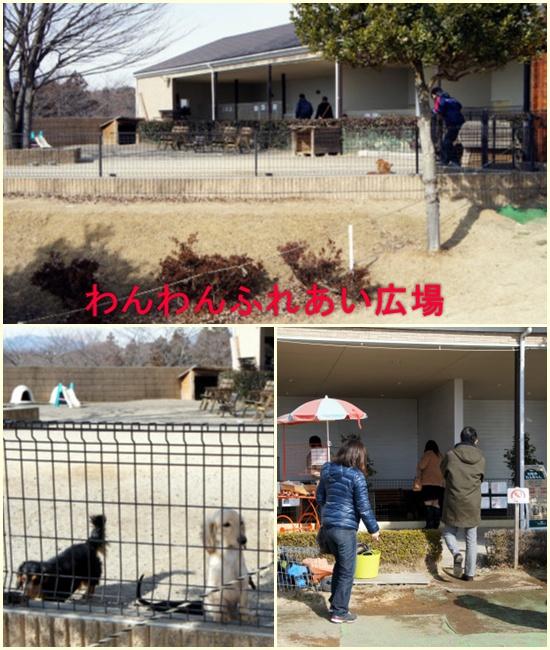 名犬牧場2