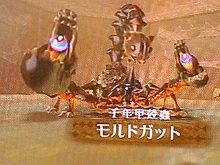 千年甲殻蟲モルドガット