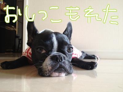 fc2blog_20120715163645b8c.jpg