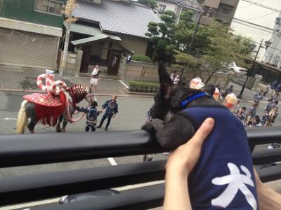 fc2blog_201209191723461bc.jpg