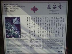 2_R_20140205034343dcc.jpg