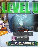 Maple120318_000013.jpg