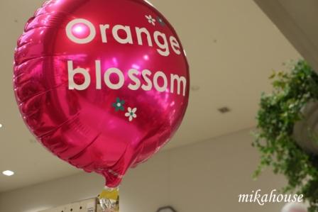 orange12_R.jpg
