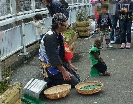 松原橋商店街2012 (12)