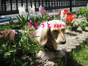 resize3628.jpg