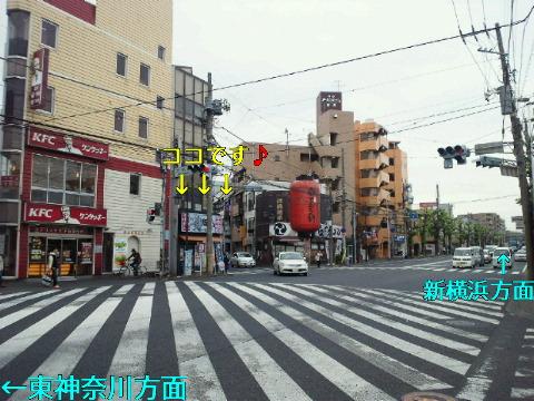 NEC_0019_20111118175252.jpg