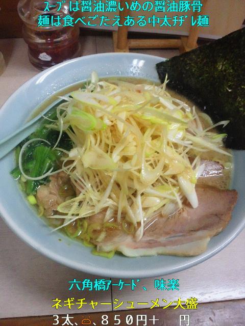 NEC_0108_20111126223139.jpg
