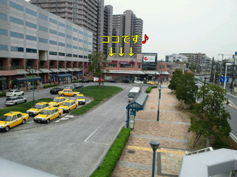 NEC_0127_20111129180538.jpg