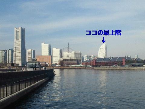 NEC_0329_20111221203459.jpg