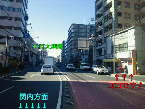NEC_0395_20111226180746.jpg