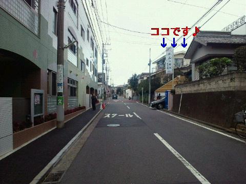 NEC_0441_20111231005315.jpg