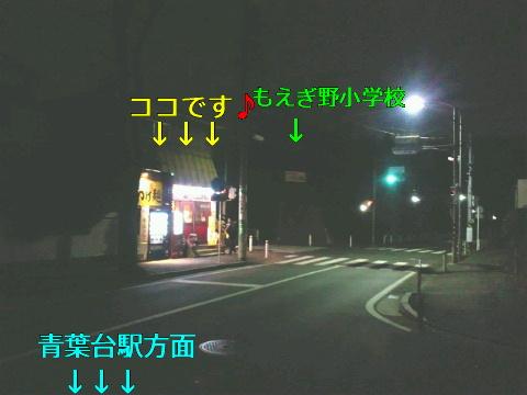 NEC_0532_20120109221858.jpg