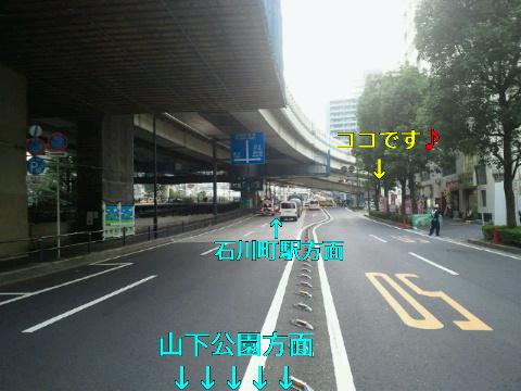 NEC_0609_20111013222820.jpg
