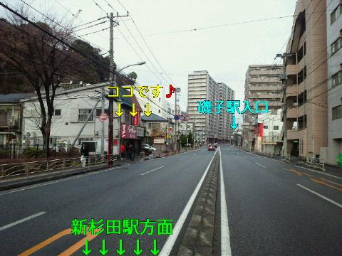 NEC_0660_20120123235306.jpg