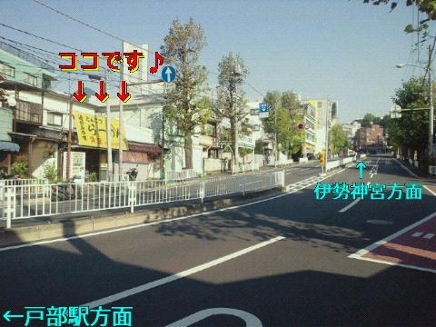 NEC_0891.jpg