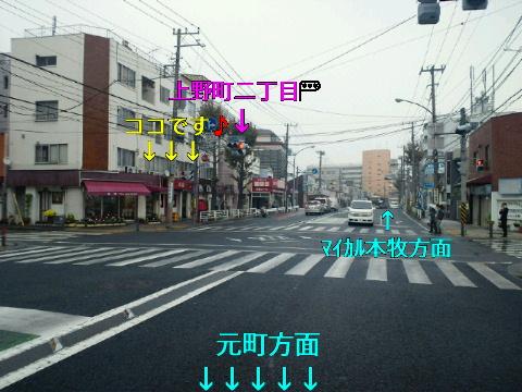 NEC_0925.jpg