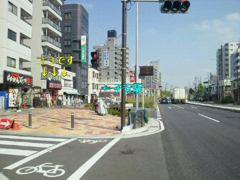 NEC_0945.jpg