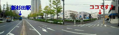 NEC_0962.jpg