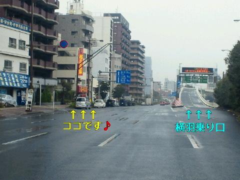 NEC_0963.jpg