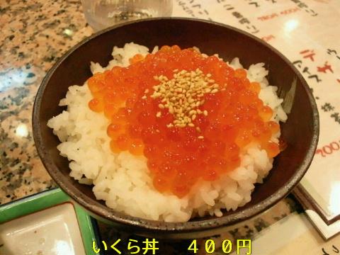 NEC_0980.jpg