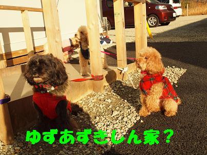 2011_1211_134844-PC112661.jpg