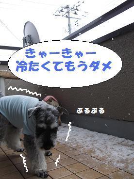 2011_1216_092222-DSCF1827.jpg