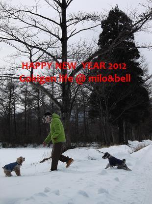 2012_0101_131230-DSCF1939.jpg